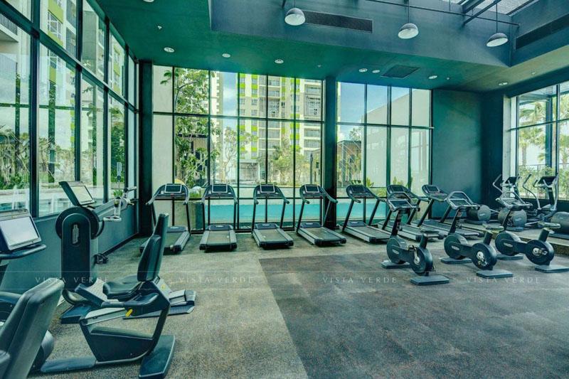phong gym Vista Verde